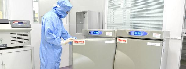 Coleta, processamento e armazenamento de célula-tronco.