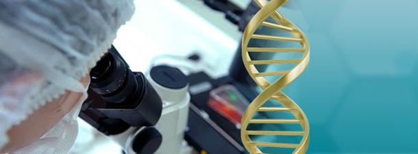 Faculdade de Medicina do ABC inicia pesquisas com tecnologia celular